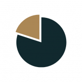 Pie chart transparent